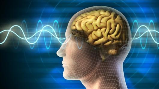 EEG og hjernebølger