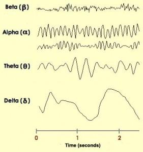De forskjellige typene hjernebølgemønstre