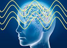 EEG koherens og orden i hjernen