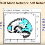 Default Mode Network — DMN