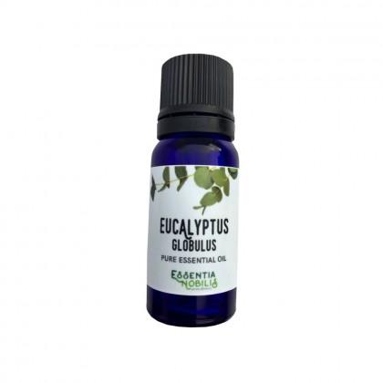 Eucalyptus er kanskje den eteriske oljen som er mest kjent for å ha god virkning på luftveiene.